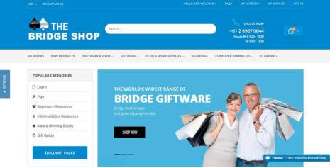 bridge-shop-seo-service-to-improve-online-sales-revenue