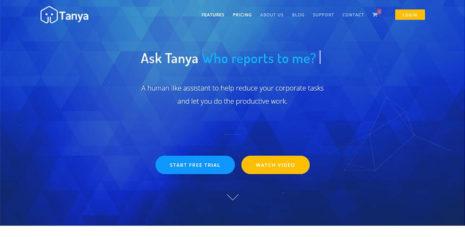 Virtual-Assistant-Development-Company-Portfolio-tanya
